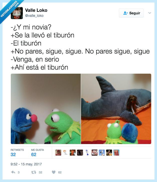 ahí,llevar,tiburón