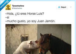 Enlace a Horse Luis y Juan Jamón, por @Tarantwitno