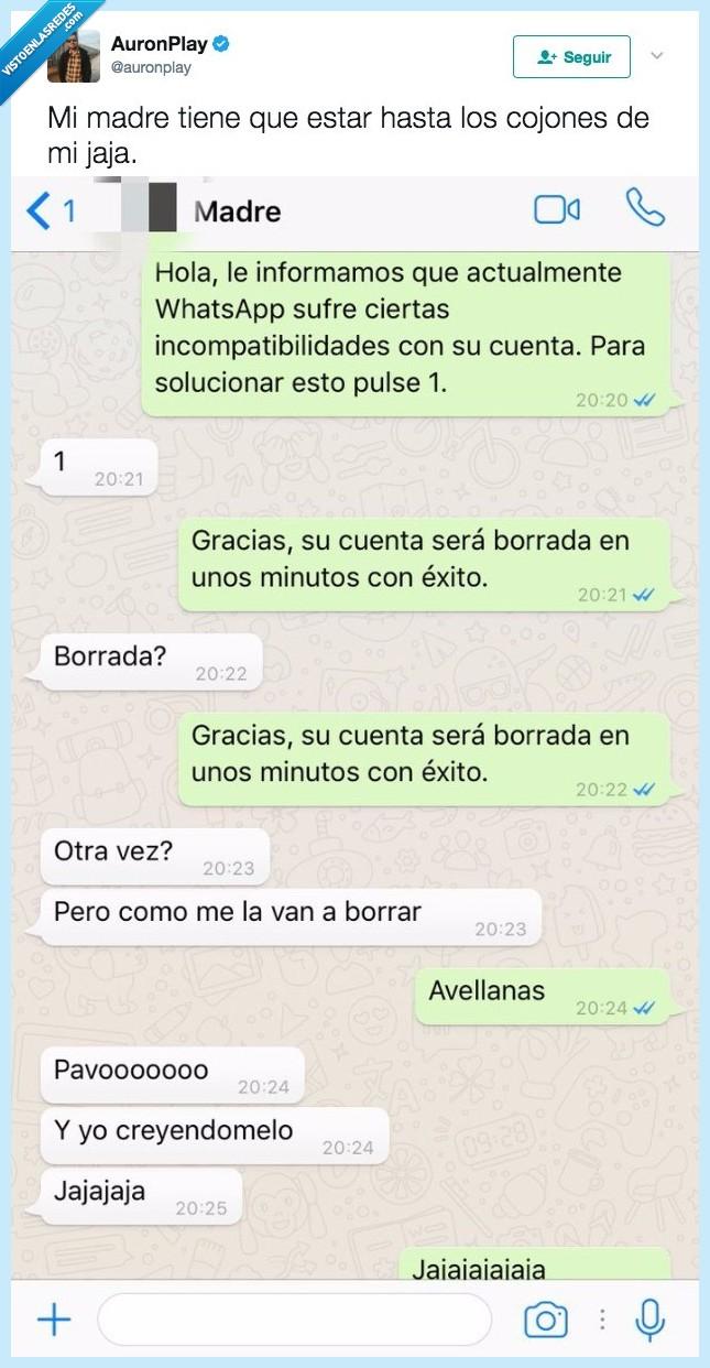 épica,madre,trolleada,whatsapp