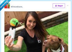 Enlace a La mejor manera de hacerle un selfie a tu perro, por @OrdureBizarre_