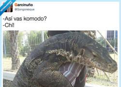 Enlace a Komodisimo por @Gongoresque