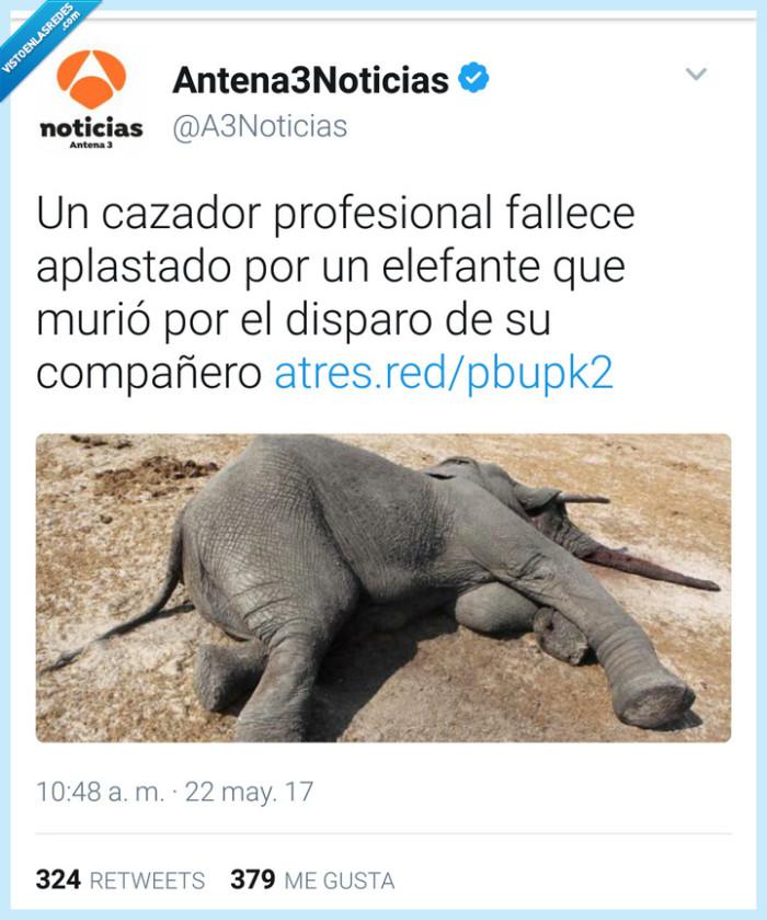 antena 3,elefante,karma