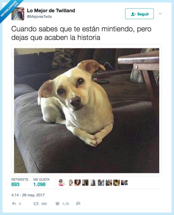 hacer,mentir,perro