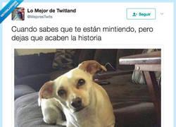 Enlace a NO CUELA, por @MejoresTwits