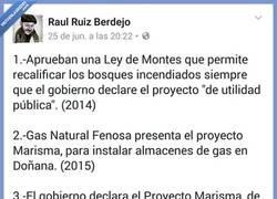 Enlace a El análisis más escandaloso que hacen sobre el incendio de Doñana y NO es casualidad