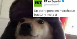 Enlace a El espíritu comunista se apodera de un perro que nos deja la noticia bizarra del día, por @AndresRub