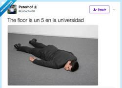 Enlace a No me levanto del suelo hasta que acaben todos los exámenes, por @cobachin98