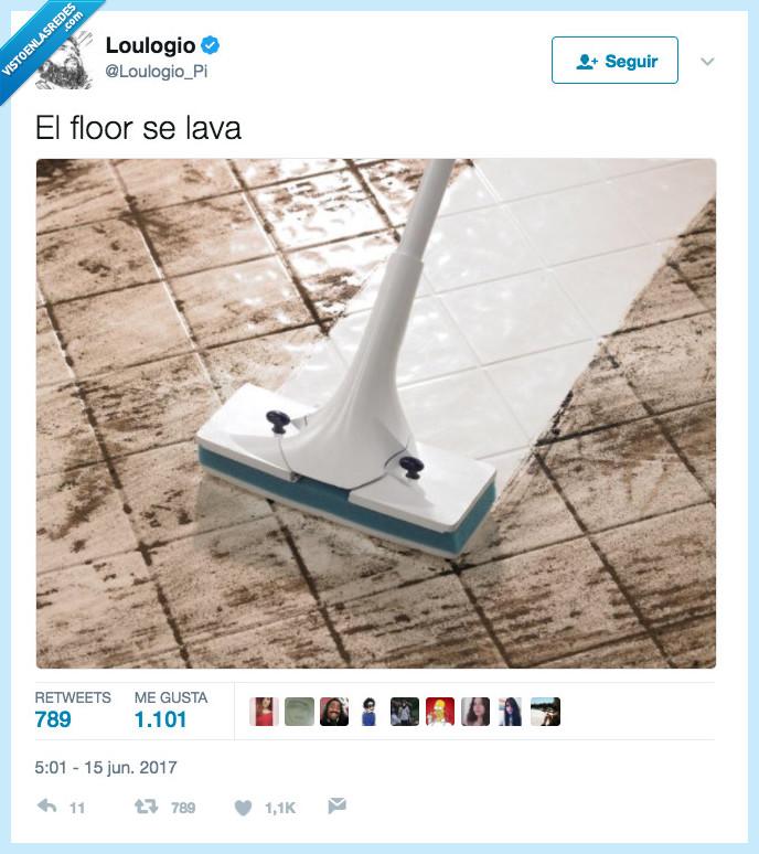 floor,gorrino,lavar