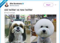Enlace a Twitter Antes VS. Twitter Después, por @elliesunakawa