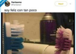 Enlace a La dosis de humor absurda del día con esta historia de amor entre cepillos de dientes, por @Flantasm