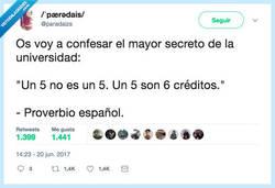 Enlace a EL SECRETO DE LA UNIVERSIDAD, por @paradaizs