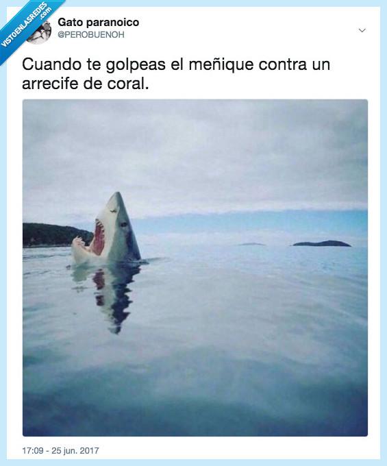 469067 - Hasta a los pobres tiburones les pasa, por @PEROBUENOH