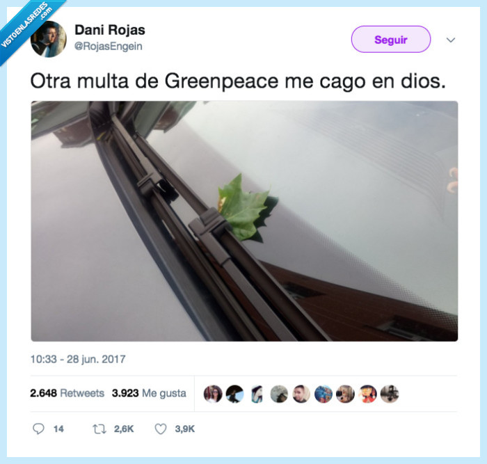 greenpeace,hoja,multa