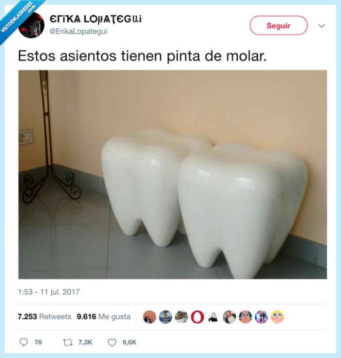 asiento,dientes,molar,taburete
