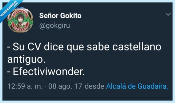 castellano antiguo,cv,efectiviwonder
