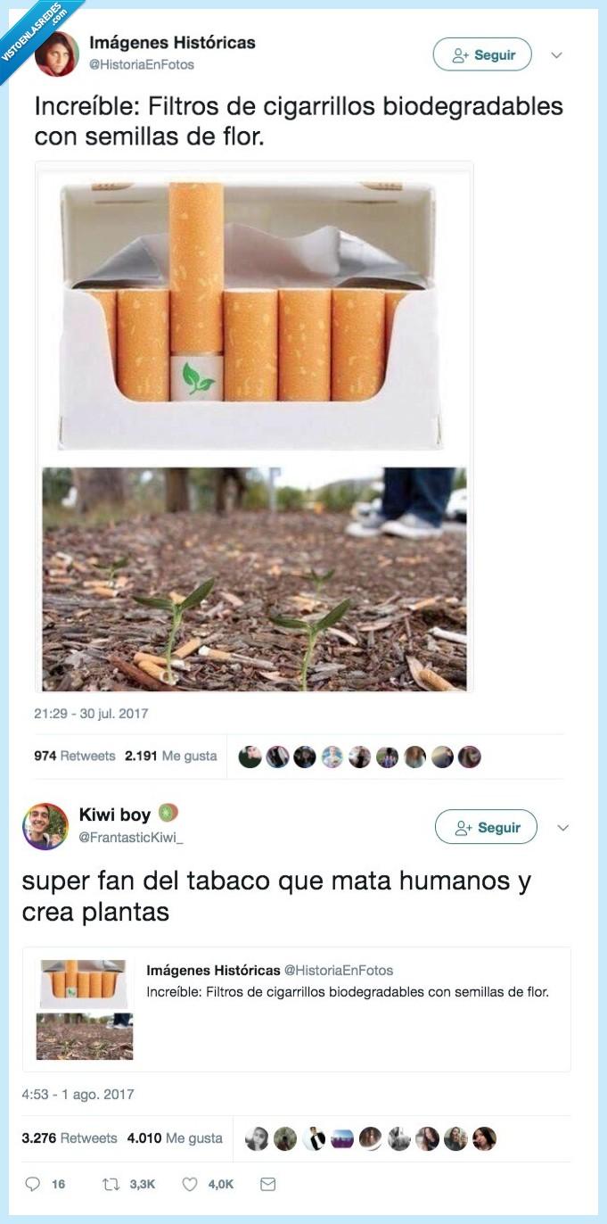 humanos,ironías,plantas,tabaco