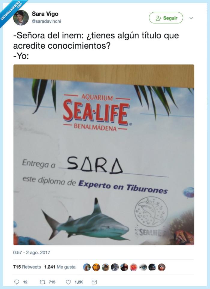 curro,entrevista,tiburon