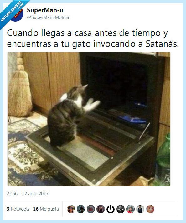 gato,invocar,satanás