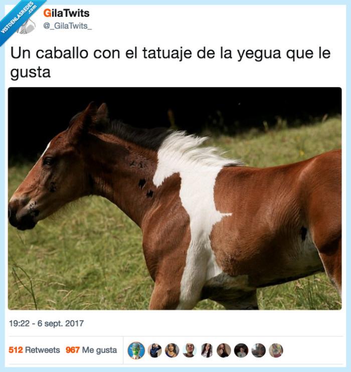caballo,tatuaje,yegua