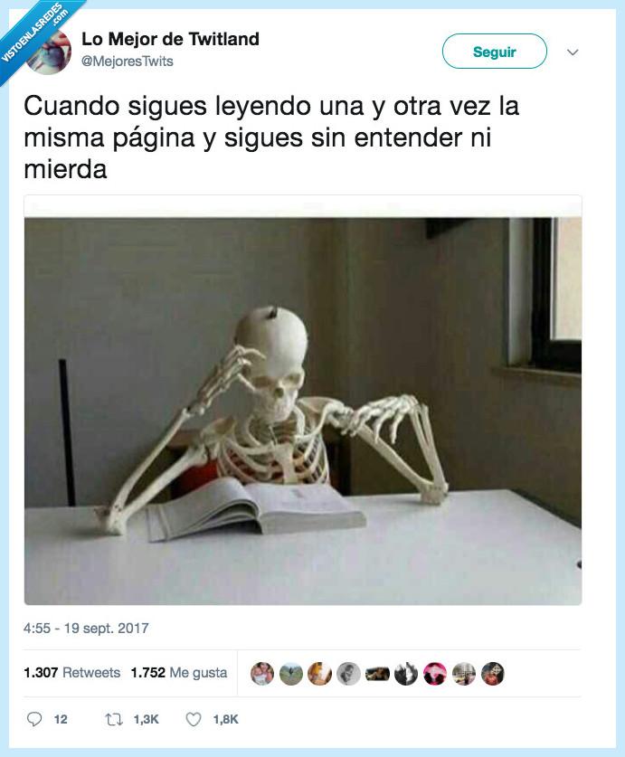 estudiar,leer,página
