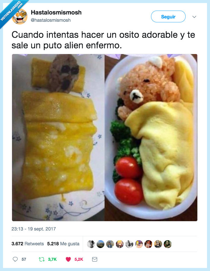 acorde,hacer,oso