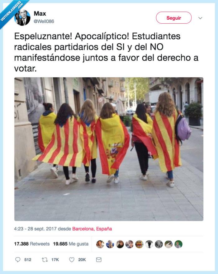 bandera,derecho,imágenes,votar