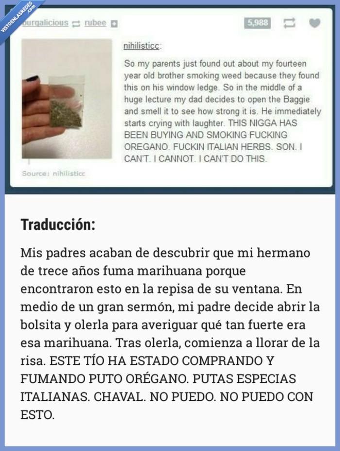 engaño,hierba,marihuana,niño,orégano,padres,timo,treceañero