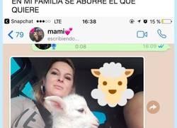 Enlace a Cuando tienes una madre que está pirada y adopta una mascota un tanto peculiar, por @jaimessevero