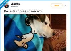 Enlace a Madurar está sobrevalorado, por @mediakia