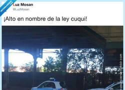 Enlace a Estás detenido en el nombre de lo cuqui, por @LuzMosan