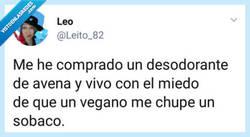 Enlace a Vivir con miedo que un vegano te chupe un sobaco, por @leito_