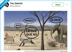 Enlace a Así hablaban los madrileños hace 14 millones de años, por @The_Gabrich