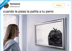 Enlace a Te sientes basura, por @Flantasma1