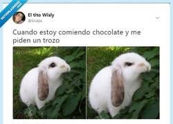 Enlace a Cuando estás comiendo chocolate y te piden un trozo, por @SrLejia