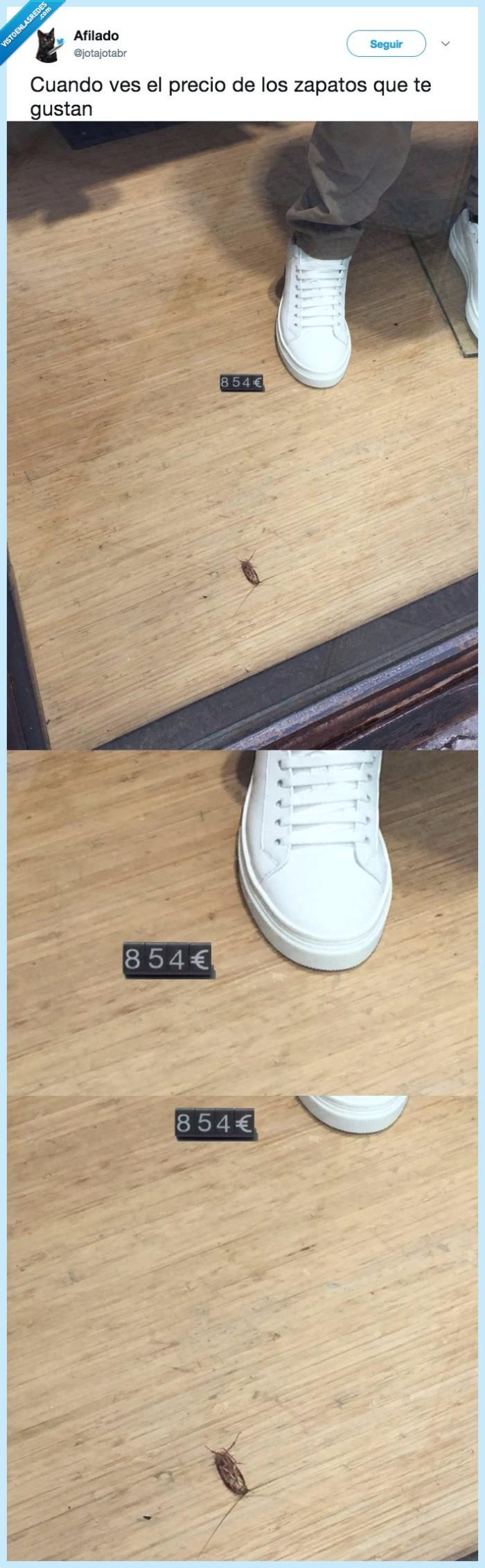 precio,zapatos gustar