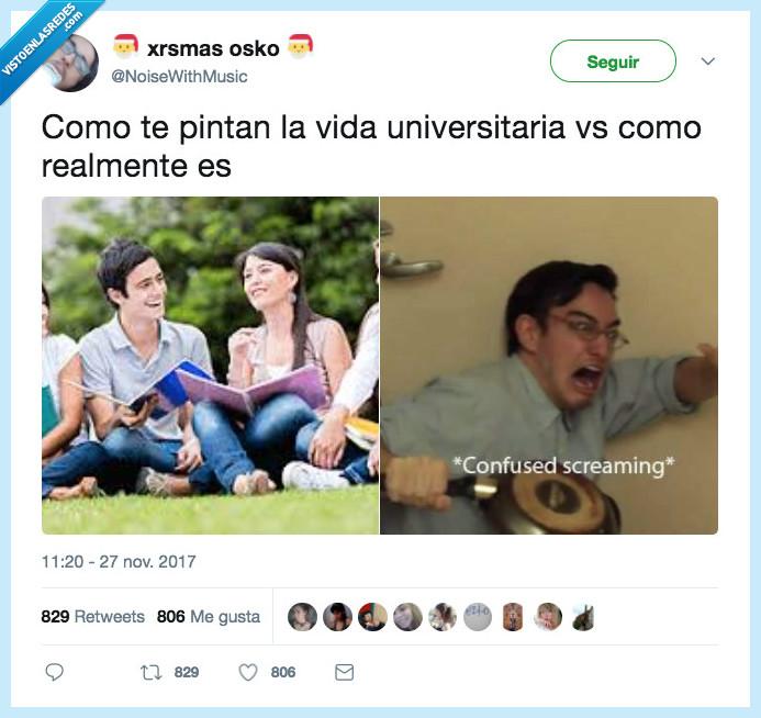 realmente,universidad,vida