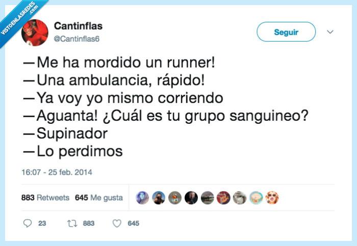perde,runner