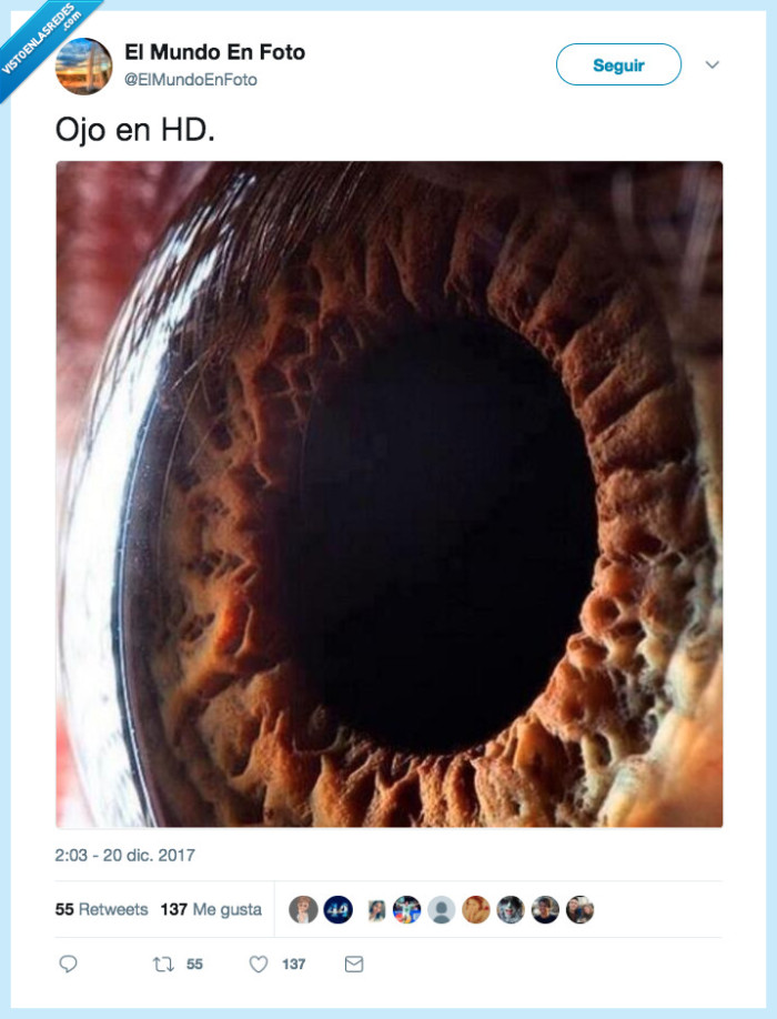 flipar,hd,ojo