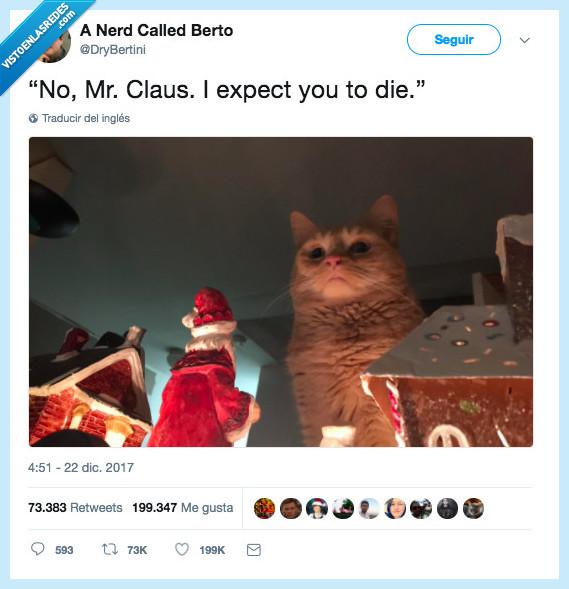 gatos,gustar,navidad