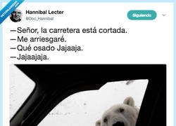 Enlace a El oso osado, por @Doc_Hannibal