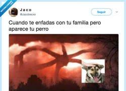 Enlace a Da igual que estés en plena III GM siempre hay tiempo para acariciar al perro, por @Jacobecxs