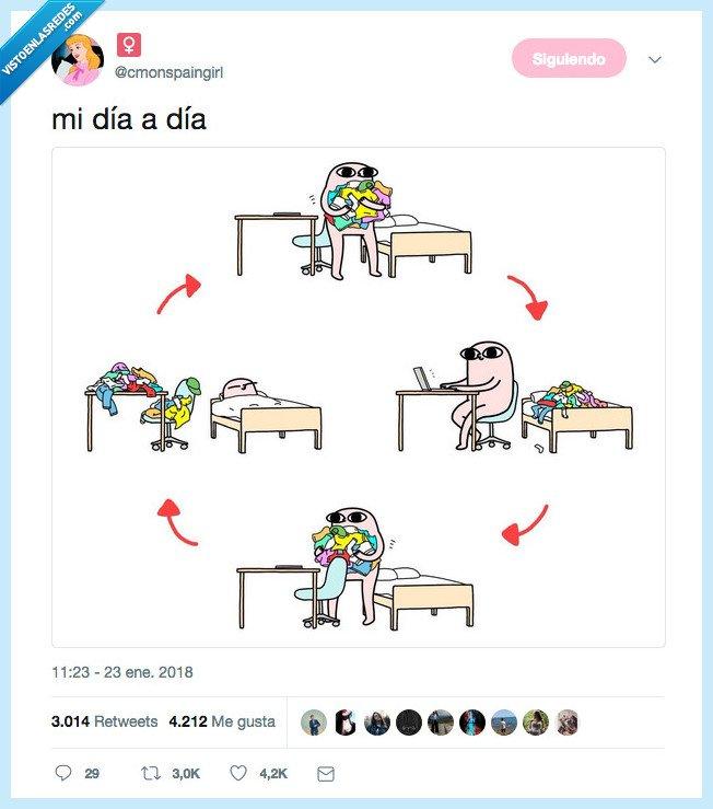 ciclo,dia a dia