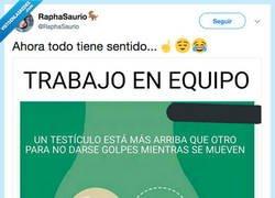 Enlace a Dato curioso, por @RaphaSaurio