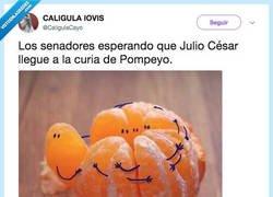 Enlace a El Meme historico, por @CaligulaCayo