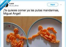 Enlace a Así pasa el rato MiguelAngel, Luca_aBrasi
