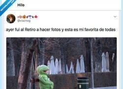 Enlace a Le hacen una foto a la rana Gustavo en el Retiro y se ha convertido en el nuevo meme de moda, por @vlaznog