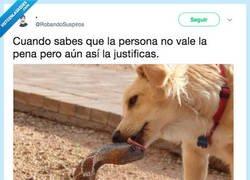 Enlace a La defiendes sin que tenga razón, por @RobandoSuspiros