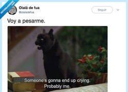 Enlace a Me siento identificado con Salem, por @olaladefua