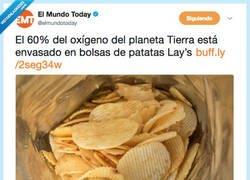 Enlace a La industria de las patatas fritas nos deja sin aire, por @elmundotoday