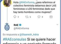Enlace a Posiblemente lo que más le duela a las feministas
